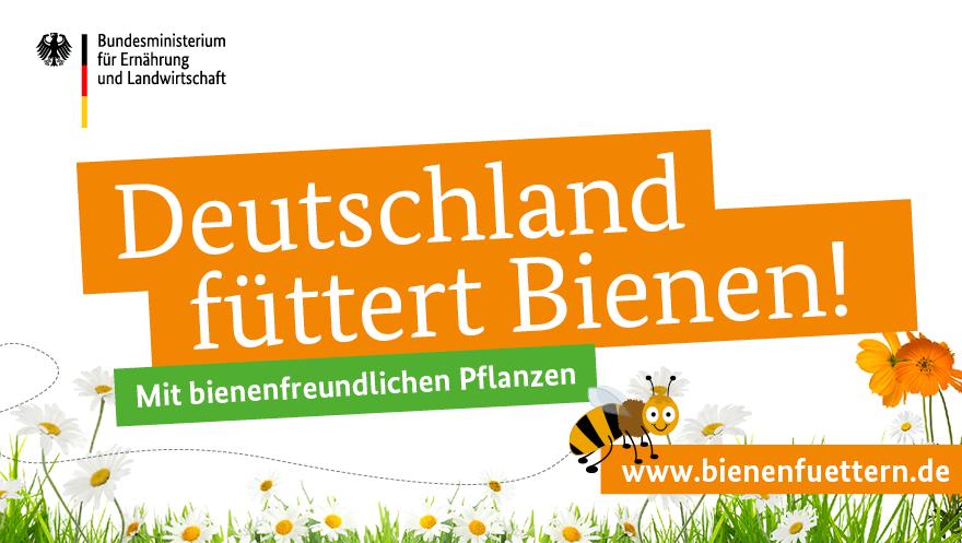 Jetzt mitmachen und Bienen füttern!