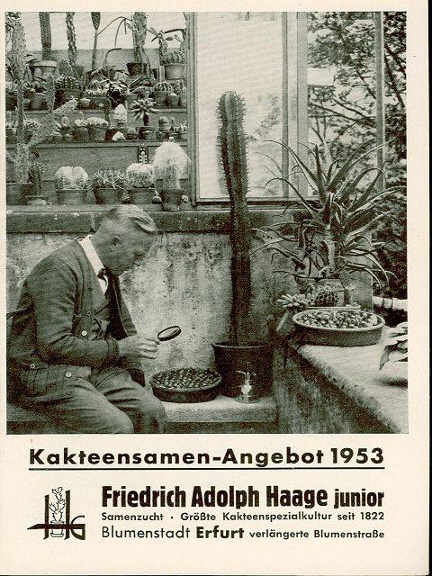 kakteen-haage-1953-katalog-samen-01.jpg