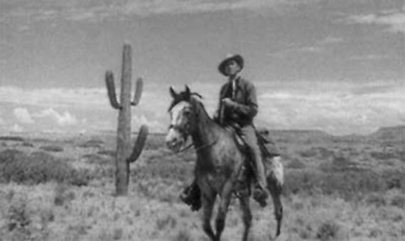 "von links: Kaktus (Carnegiea gigantea), Pferd (Equus ferus caballus), James Stewart (Homo sapiens sapiens); Szene aus dem Western ""Broken Arrow"" (1950)"