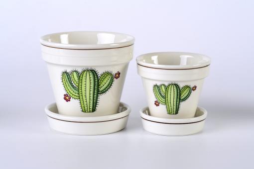 Kaktustopf Villeroy & Boch, klein, Cereus