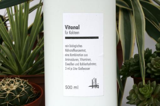Vitanal für Kakteen 500 ml flüssig