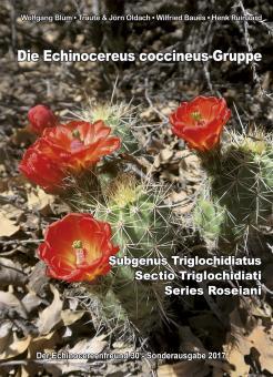 Echinocereus - Die Echinocereus coccineus Gruppe - Blum, Oldach, Baues, Ruinaard - Der Echinocereusfreund