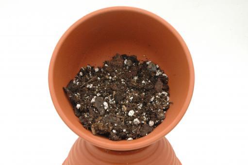Epiphytes soil no. 04 - 5 l