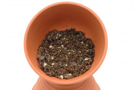 Hoya-soil 5 l