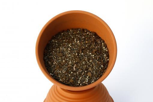 Propagation-soil - Sowing mix - no. 06 - 5l