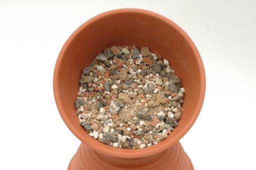 Cactus soil - pure mineral no. 02 - 5 l