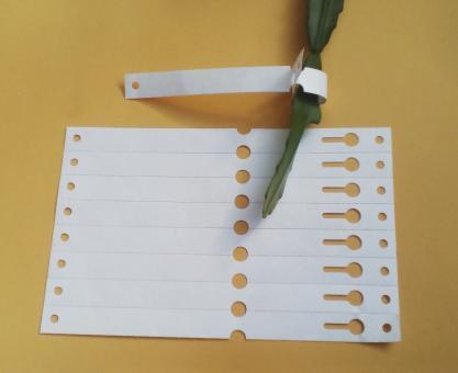 Schlaufenetiketten 160 x 13 mm - 100 Stück