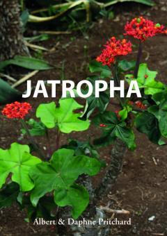 Jatropha - Daphne und Albert Pritchard