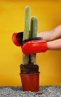 Cacti gloves - bristles 3 cm
