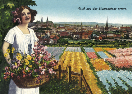 Postkarte 1 - Grüße aus der Blumenstadt Erfurt