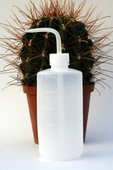 Spritzflasche zum gezielten Gießen 500 ml