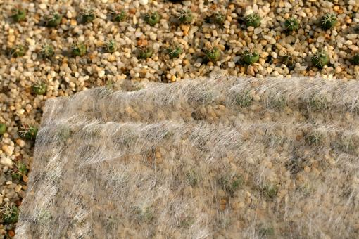 Horticultural fleece