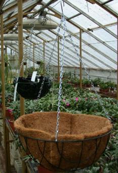 Hanging Baskets 25 cm (Hängekorb)