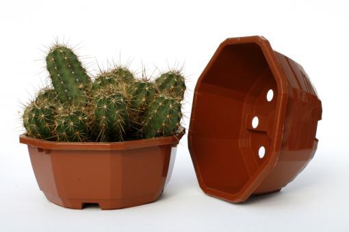 Octagonal Bowls 16 cm