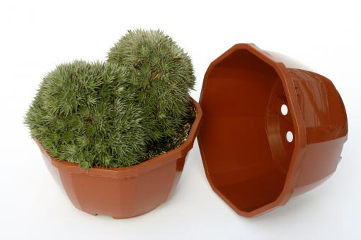 Octagonal Bowls 18 cm